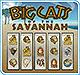 Slots: Big Cats